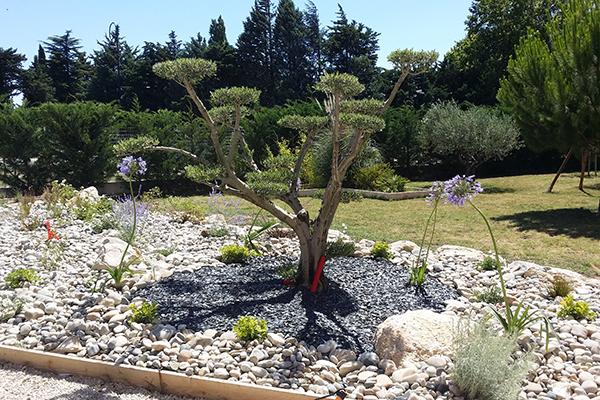 entretien de jardin avignon vaucluse cr ation d 39 espaces